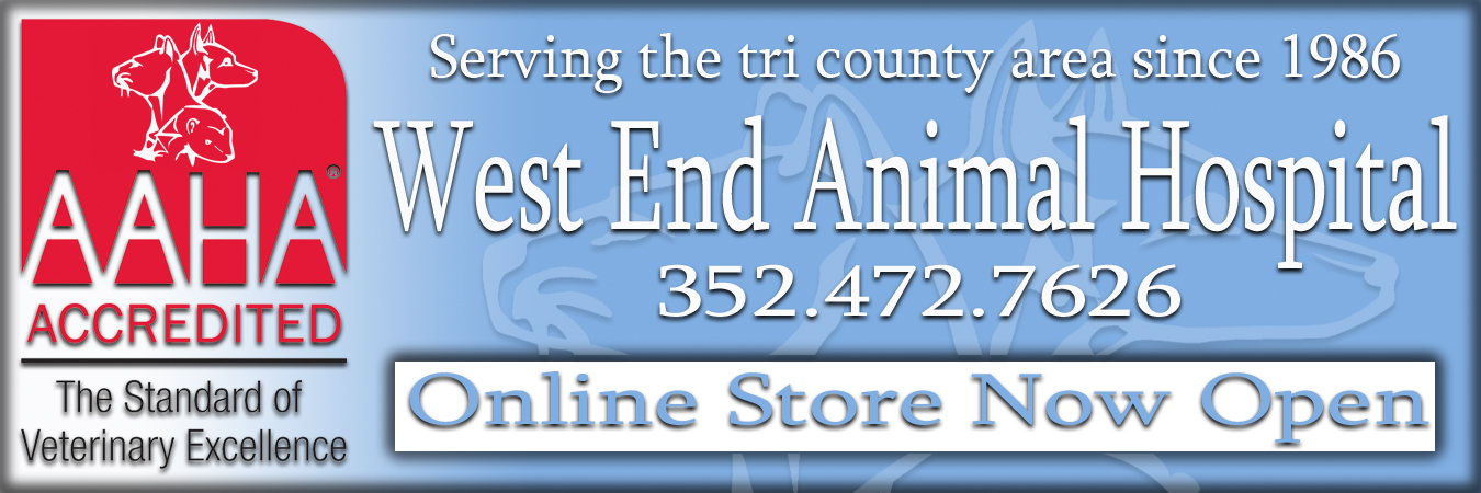 West End Animal Hospital - 15318 W Newberry Rd. Newberry, FL 32669