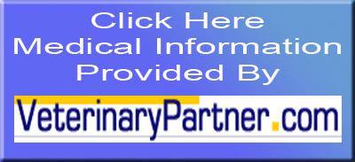 Veterinary Medical Information